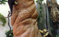 コアリクイと蟻塚