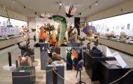 鳥の羽根を使った羽根製頭飾りとその素材となる鳥たち