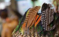 ヤシの葉柄を編み込んだ台にガヴィオンやインコなどの羽根をさしている