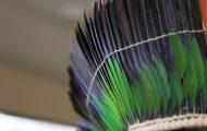 ミドリインコの羽根をたくさん使っている